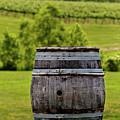 Around The Vineyard by Rob Narwid