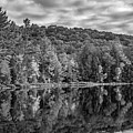Arrowhead Provincial Park Bw by Steve Harrington