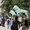 Art Institute Of Chicago Bronze Lions by Russell Ingram
