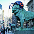 Art Institute Of Chicago Lions by Anthony Doudt