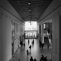 Art Institute Of Chicago Modern Wing by Kyle Hanson