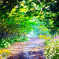 Art Rendered Country Pathway by Clive Littin