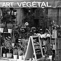 Art Vegetal - Beaune, France by Jani Freimann