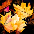 Artful Maple Leaves by Debra Lynch
