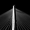 Arthur Ravenel Jr. Bridge Lines by Dustin K Ryan