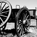 Artillery Wagon by Jean Macaluso