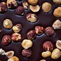 Artisanal Chocolate Closeup by Elena Elisseeva