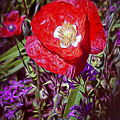 Artistic Kentucky Red Poppy by Linda Phelps
