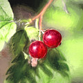 Artistic Panterly Two Wild Goosberries by Leif Sohlman