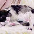 Artist's Cat Sleeping by Kazumi Whitemoon