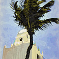 Aruba Palm by Alice Gipson