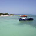 Aruba Rogers Beach  by JG Thompson