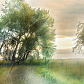 As Days Go By by Janie Johnson