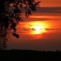 As Evening Falls by Lori Seaman