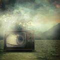 As Seen On Tv by Zapista