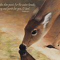 As The Deer Verse by Becky West