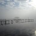 As The Fog Lifts by Nicole I Hamilton