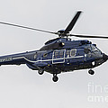 As332 Super Puma Helicopter by Timm Ziegenthaler