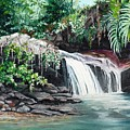 Asa Wright Falls      Sold by Karin  Dawn Kelshall- Best