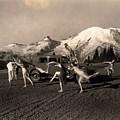 Asahel Curtis, 1874-1941, Dancing Girls At Sunrise by Asahel Curtis