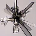 Ascorbic Acid Crystal by Raul Gonzalez Perez