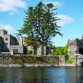 Ashford Castle And Cong River by Bob Phillips
