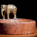 Ashtray With Elefant by Stefan Rotter