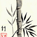 Asian Bamboo by Michael Vigliotti