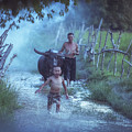 Asian Boy Playing Water With Dad And Buffalo by Somchai Sanvongchaiya