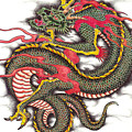 Asian Dragon by Maria Arango