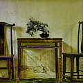 Asian Furniture And Bonsai by Chris Lord