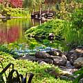 Asian Garden 3 by Lydia Holly