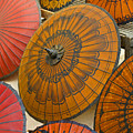 Asian Umbrellas by Michele Burgess