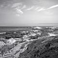 Asilomar Beach Stairway In Black And White by Joyce Dickens