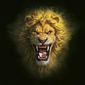 Aslan by Mark Fredrickson