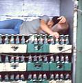 Asleep On The Job by Maro Kentros