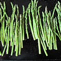 Asparagus by Rebecca Renfro