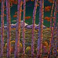 Aspen At Night by Johnathan Harris