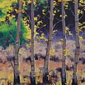 Aspen Colors by Graham Gercken