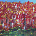 Aspen Fall by Donna Blackhall