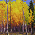 Aspen Glow by Cody DeLong