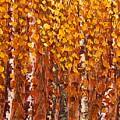 Aspen Grove by Wanda Pepin