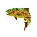 Aspen Leaf Rainbow Trout 1 by Agustin Goba