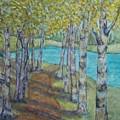 Aspen Path by Patricia Voelz