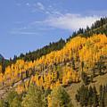 Aspen Ridge San Juan Mountains by John Stephens