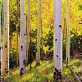 Aspen Symphony by Gary Kim