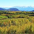 Aspen Valley by Joseph Holub