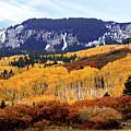Aspen Vista by Linda Weyers