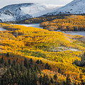 Aspens And Mountains In The Morning Light by Mike Doty