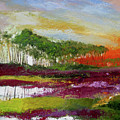 Assateague Sunset by James Gallagher